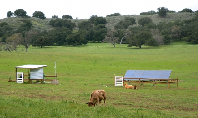 Sun Pacific Solar agricultural installation in Santa Ynez California. Local electrical contractor. Commercial, agricultural, residential. Solar Energy, Solar Power, Solar Panels, Solar Electric, Photovoltaic, Renewable Energy, Clean Energy, Green Energy, Solar Installation, Sustainable Energy, Sustainability, Alternative Energy, Energy, Energy Management, Energy Conservation, Solar PV, Sustainable Development, Solar Thermal, Energy Efficiency, Wind, Green Building, Clean Technology, Clean Tech, Energy Audits, Cleantech, Custom installations, comp roof solar installations, tile roof solar installations, flat roof solar installations, flat membrane roof solar installations, solar panel installations, standing seam metal roof solar installations, inverters, battery backup, pole mount solar installations, well pumps, ground mount solar installations, grid-tied solar, off-grid solar, grid tied solar, off grid solar, agricultural pumping, Hollister Ranch, Pismo Beach Santa Barbara, Ojai, Hope Ranch, San Luis Obispo, Ventura, Santa Ynez, Gaviota, Goleta, Montecito, Santa Barbara County, Tri-County area, Tri-County, Southern California, Carpinteria, Summerland, Buellton, Padaro Lane, Santa Maria, Lompoc